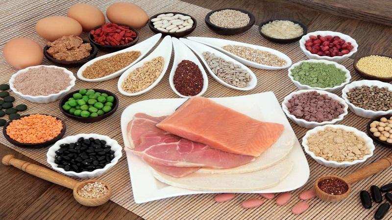 بهترین متخصص تغذیه و رژیم درمانی اصفهان | اهمیت پروتئین ها در سلامتی بدن