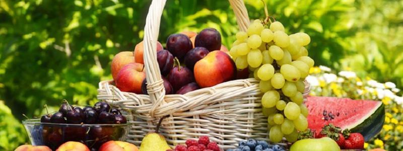 تاثیر میوه های شیرین تابستانی بر چاقی | بهترین متخصص تغذیه و رژیم درمانی اصفهان